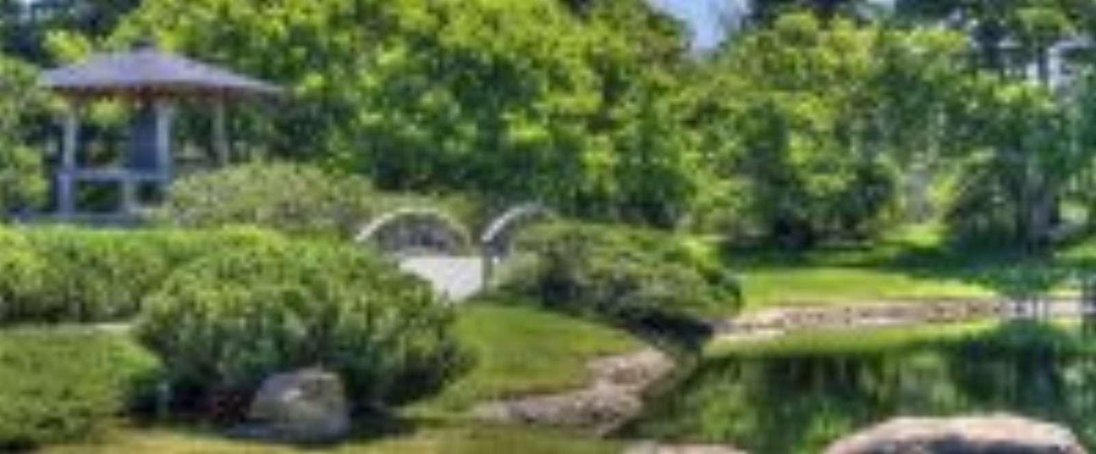 Nature-Jardins