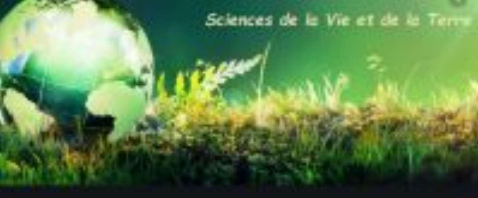 Sciences de la terre et de l'environnement