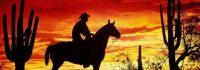 DVD-Film-Western